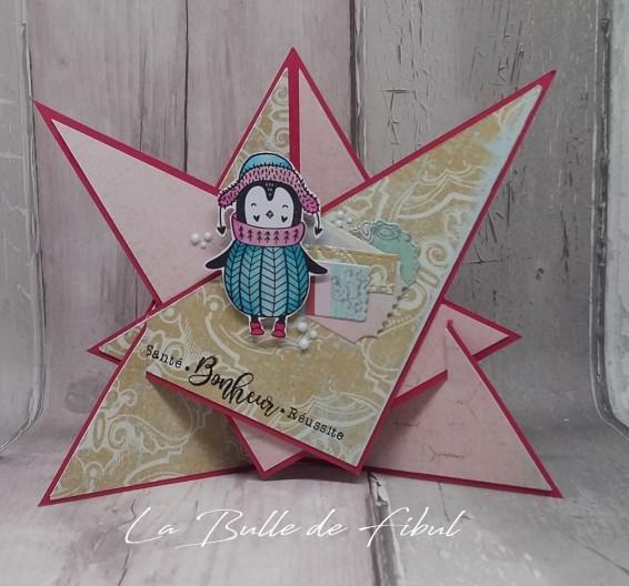 CSA 2019 défi étoile 3D_La Bulle de Fibul
